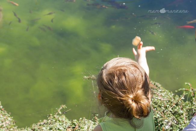 Emma tirando migas de pan a los peces del Botánico