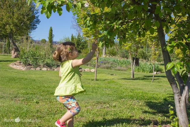 Emma cogiendo hojas de un árbol en el Botánico