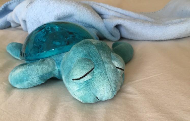 Mi tortuguita azul, de Cloudb